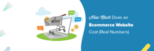 How Much Does an eCommerce Website Cost? [2020 Edition] – Nectarbits  Ecommerce Website Co ...