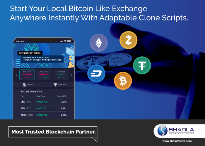 Local Bitcoin Clone Exchange: Advantages, security, working and cost