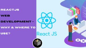 Choose the ReactJS for Web Development and Also Know How And Where You can Use It For Your Web A ...