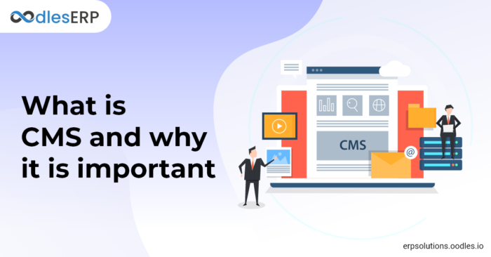 What is CMS and why it is important