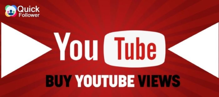 BUYING A YOUTUBE VIEWING GUIDE (PROS AND CONS)