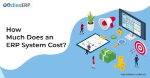Cost Estimations For ERP Software Development