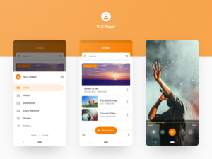 How Much Does it Cost to Develop an App like VLC/MX Player?  Want to develop App like VLC or MX  ...