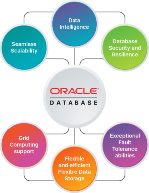 Oracle Database Development Services | Hire Oracle Database Developers  Arka Softwares offers to ...