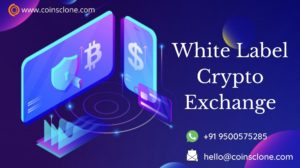 Reasons to Buy White Label Crypto Exchange Software to Build your Crypto Exchange