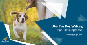 Launching an on-demand dog walking app built with extensive customization