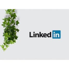 Effective LinkedIn Strategies for B2B Marketing