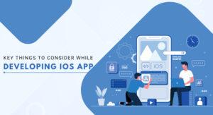 Key Things to Consider While Developing iOS App