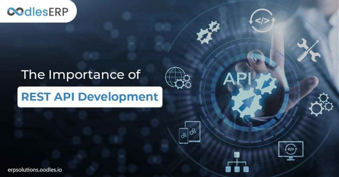 REST API Development: Things You Need To Know