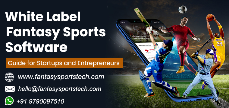 Fantasy Sports Software Solutions | Complete Guide for Startups