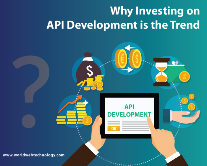 Why Investing on API Development is the Trend