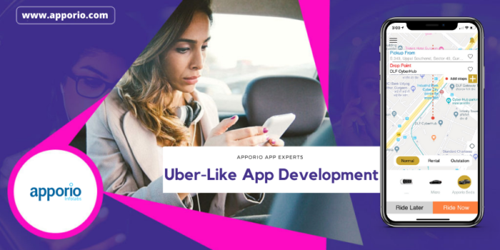 What is an Uber clone?