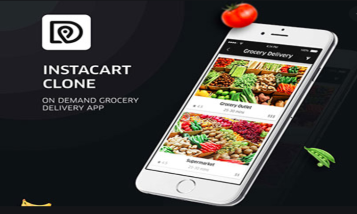 Hoe to get your grocery shopping platform with Instacart clone script?