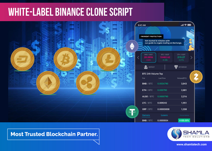 Is Whitelabel Binance Clone Scripts really safe? How is it beneficial?