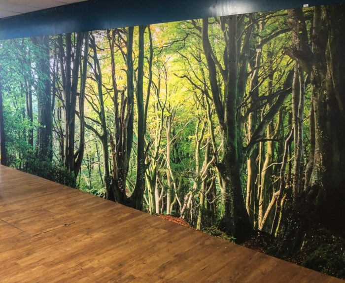Add a unique look and style to your space with Wall Graphics. We have installed wall graphics su ...