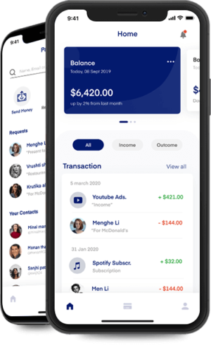 Paypal Clone App, PayPal Clone Script, Payment App Like PayPal
