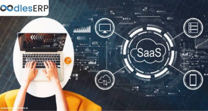 SaaS-based Payroll Software: Features and Benefits At a Glance