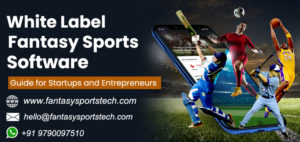Fantasy Football App Development | White Label Fantasy Football Software Development  We know th ...