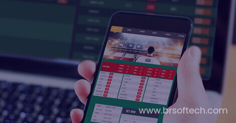 Are you looking for a fantasy sports app development company? BR Softech is the best option for  ...