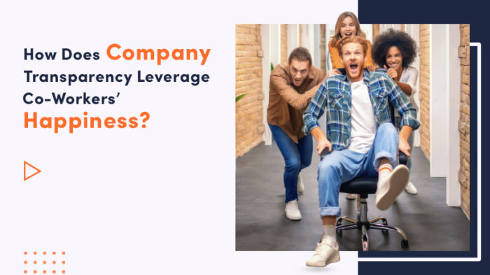 How Does Company Transparency Leverage Co-Workers' Happiness?