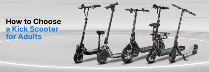 A Complete Guide on Choosing Electric Scooter for Adults  – Eveons Mobility Systems