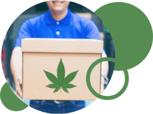 The cannabis industry is growing since 2000 and it has legalized in some parts of the globe. Glo ...