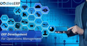 Custom ERP Development For Operations Management