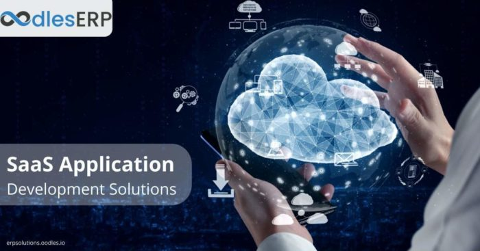 Essential Components of SaaS Application Development