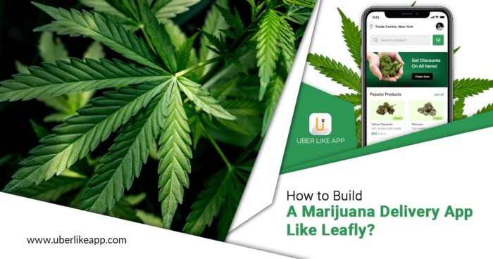Leafly Clone: Launch On-Demand Cannabis Delivery App