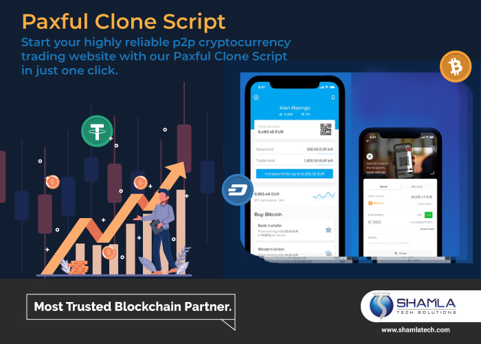 PAXFUL CLONE: This Is What Professionals Do
