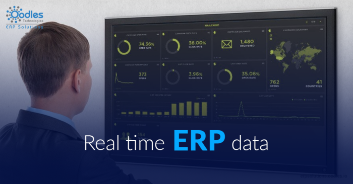 The Role Of Big Data Analytics In ERP Applications | Big data and ERP
