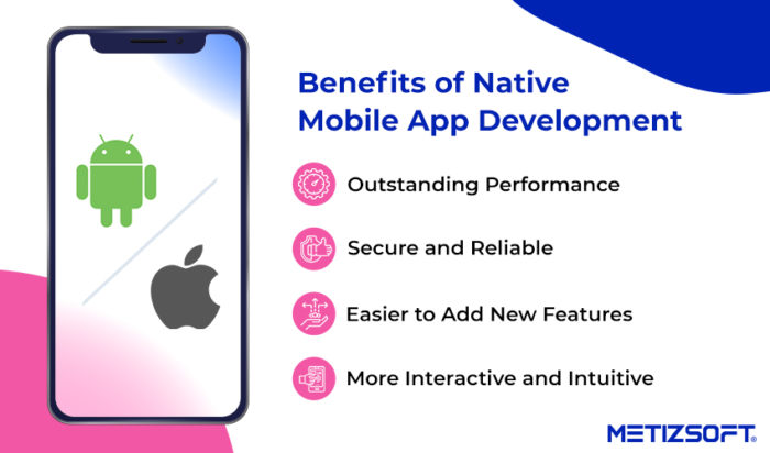 Top 7 Key Benefits of Native Apps Development | Metizsoft