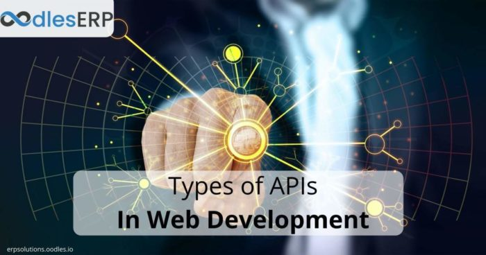 Types of APIs In Web Application Development Processes
