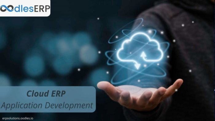 Cloud ERP Application Development For Business Process Management