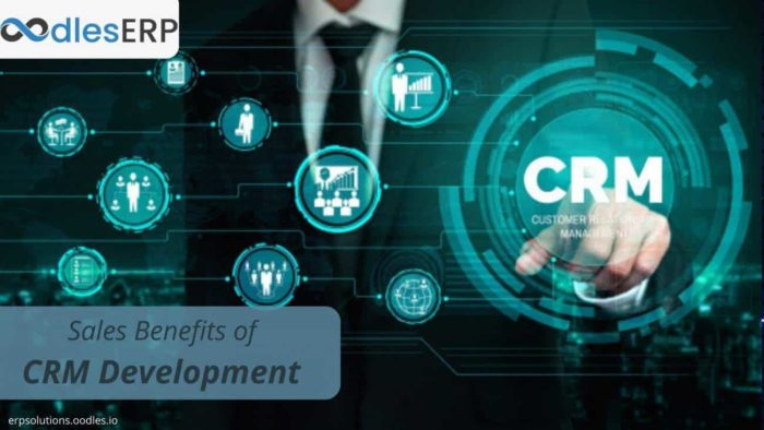 How Sales Teams Can Benefit From Custom CRM Application Development