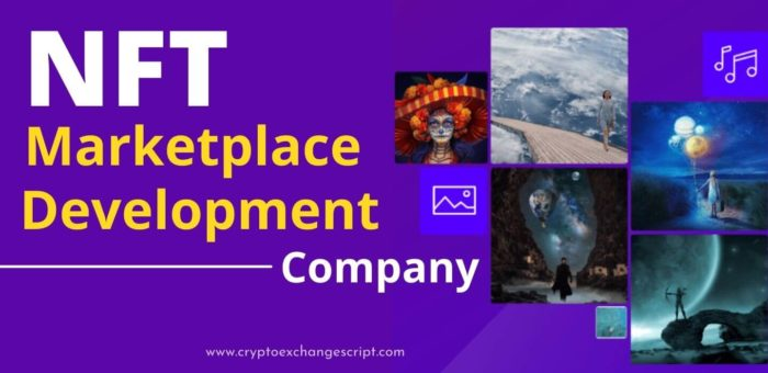 NFT Marketplace Development   Non-Fungible Marketplace Software Development Company