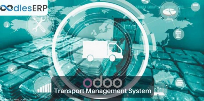 Odoo ERP Development For Logistics Management