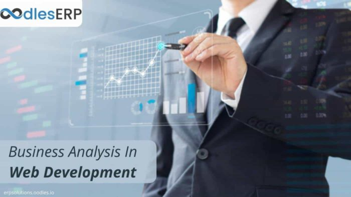 The Importance of Business Analysis In Web Development