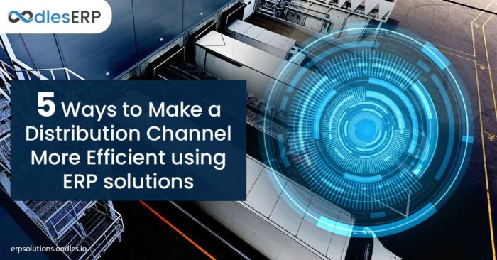 5 Ways to Make a Distribution Channel More Efficient using ERP solutions