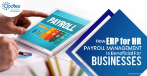 How ERP for HR and Payroll Management Is Beneficial For Businesses