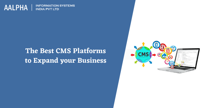 The Best CMS Platforms to Expand your Business