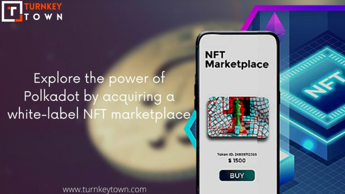 Know more about the benefits of creating an NFT marketplace solution in Polkadot, well-known NFT ...