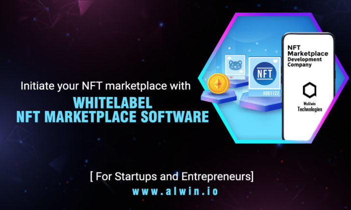 White Label NFT Marketplace Development | White label NFT Marketplace Solutions