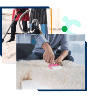 Carpet Cleaning in Brisbane From $25 | Lowest Price Guaranteed