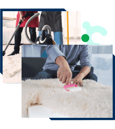 Carpet Cleaning in Brisbane From $25   Lowest Price Guaranteed