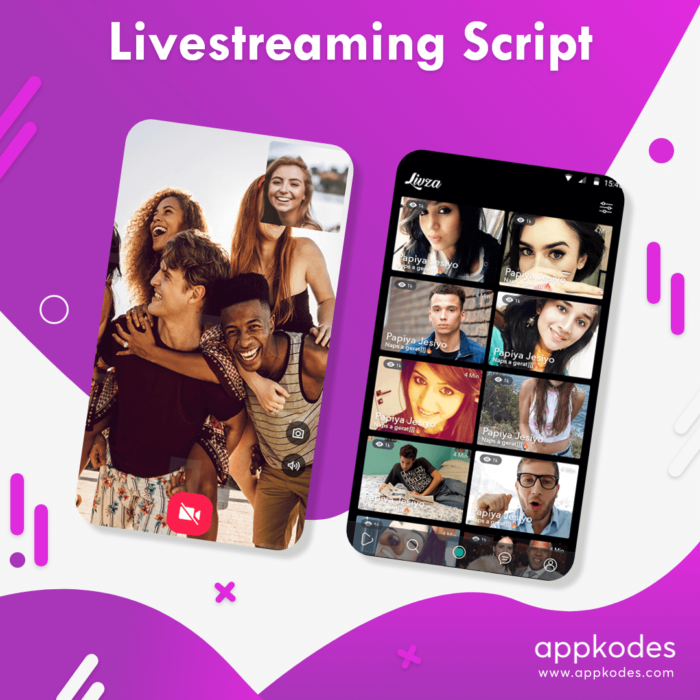 Get your streaming platform developed with the best video streaming script