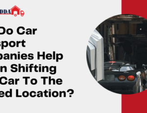 Want to Shift Your Bikes! Bike shifting services are there for you – Logisticadda